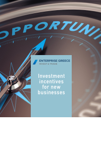Investment incentives for new businesses Download